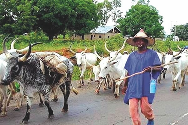 Set up Commission of Inquiry to deal with Fulani menace in Kwahu – Lawyer