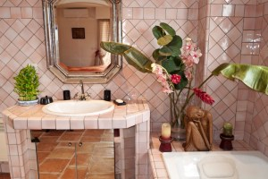 The master bedroom's open bathroom