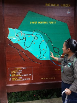 The route of our very short walk/trip and our tour guide, Sheila