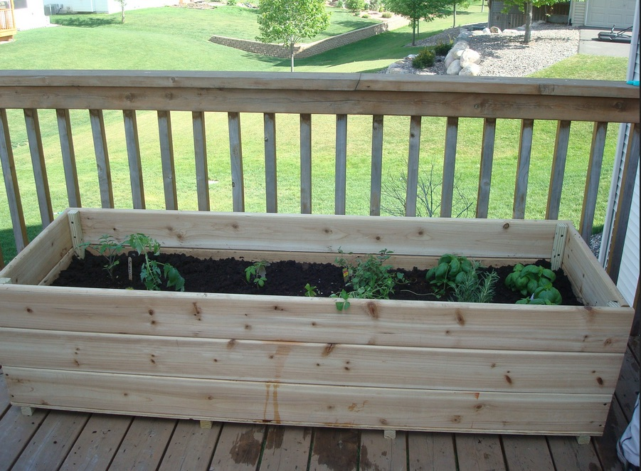 Vegetable Box Grow Your Own