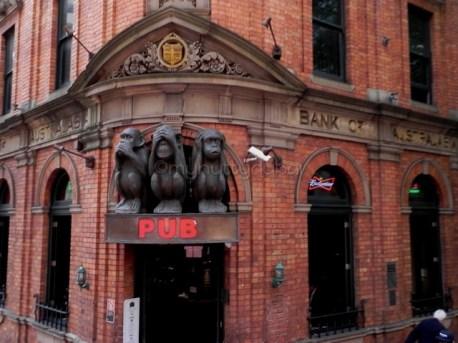 Monkeys at a pub