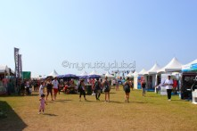 Stalls on the grass