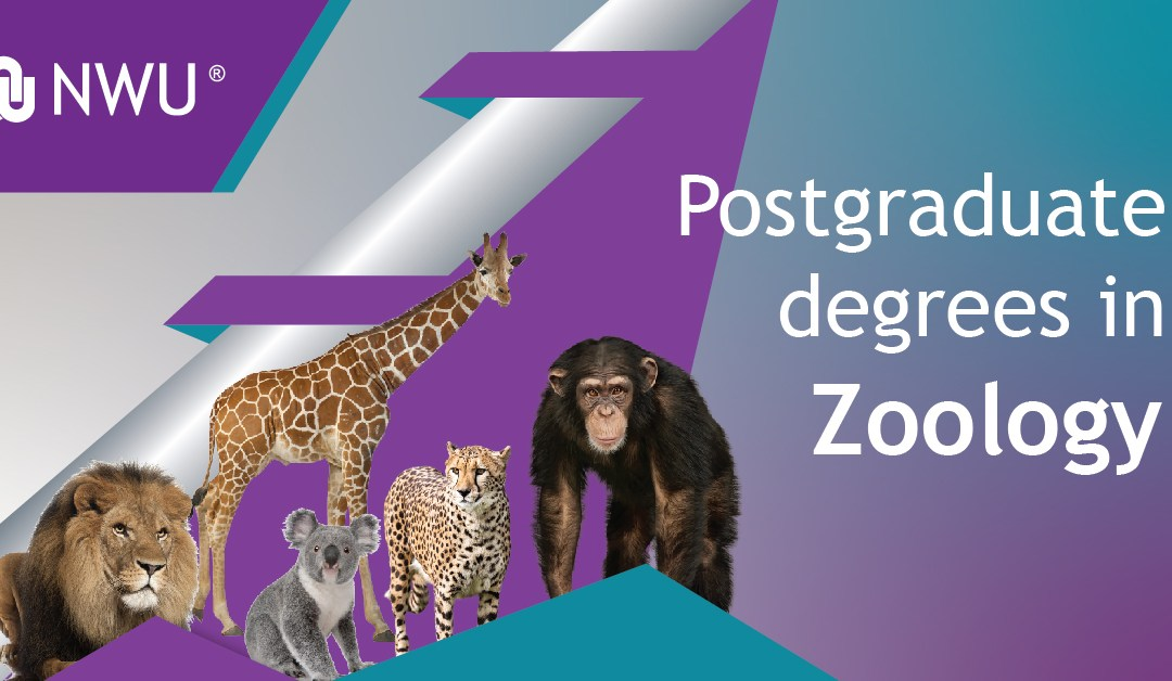 Postgrad Degree in Zoology – Discover how animals influence our lives