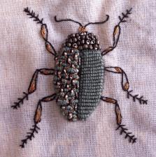 bug 5a