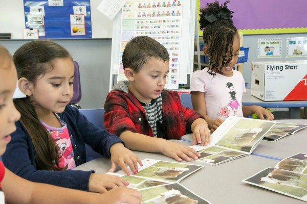 Shared Reading And Guided Learning In Context