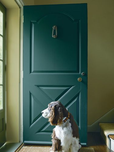 PINTEREST- GUILFORD GREEN PEACOCK BLUE