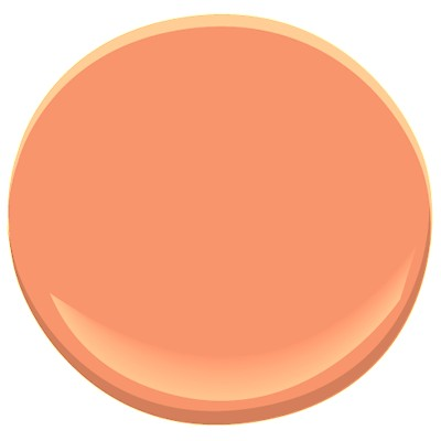 color of the week   coral   peach   apricot