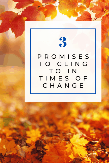 When seasons change, God remains the same. And he promises that there will be more incredible moments ahead.