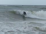 ESA Surf contest 1-1-12_1145