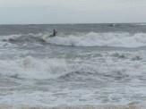ESA Surf contest 1-1-12_1169