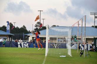 Florida-v-Auburn-11-6-2015_64