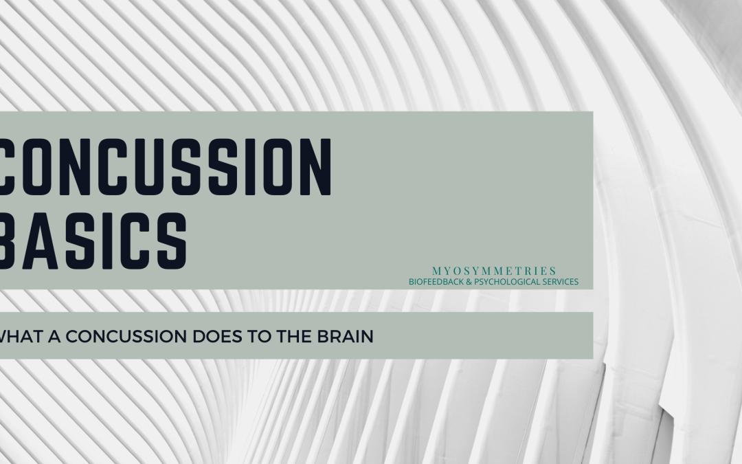 Concussion Basics