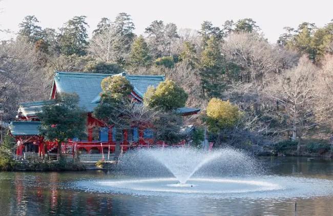 The Inokashira Park Dismemberment