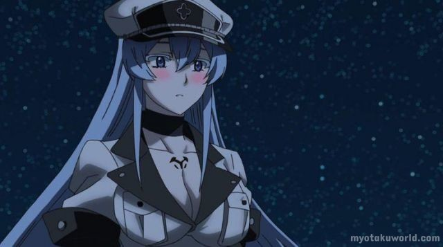 Esdeath From Akame ga Kill