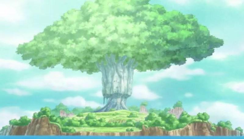 The Devil Fruit Tree