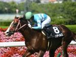 【北九州記念 2018】最終予想 前走アイビスSD組のアノ馬が本命!