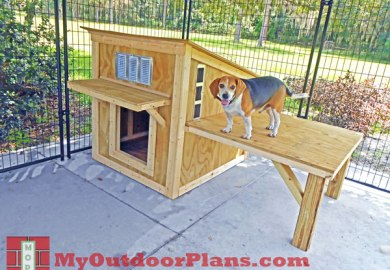 Search Beagle Dog House Plans