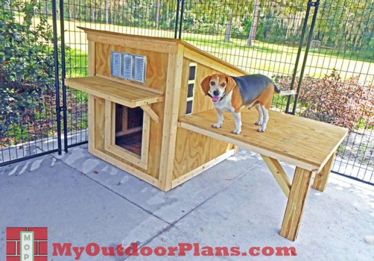 Search Beagle Dog House Plans