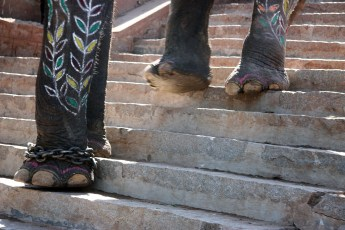 Walking down steps