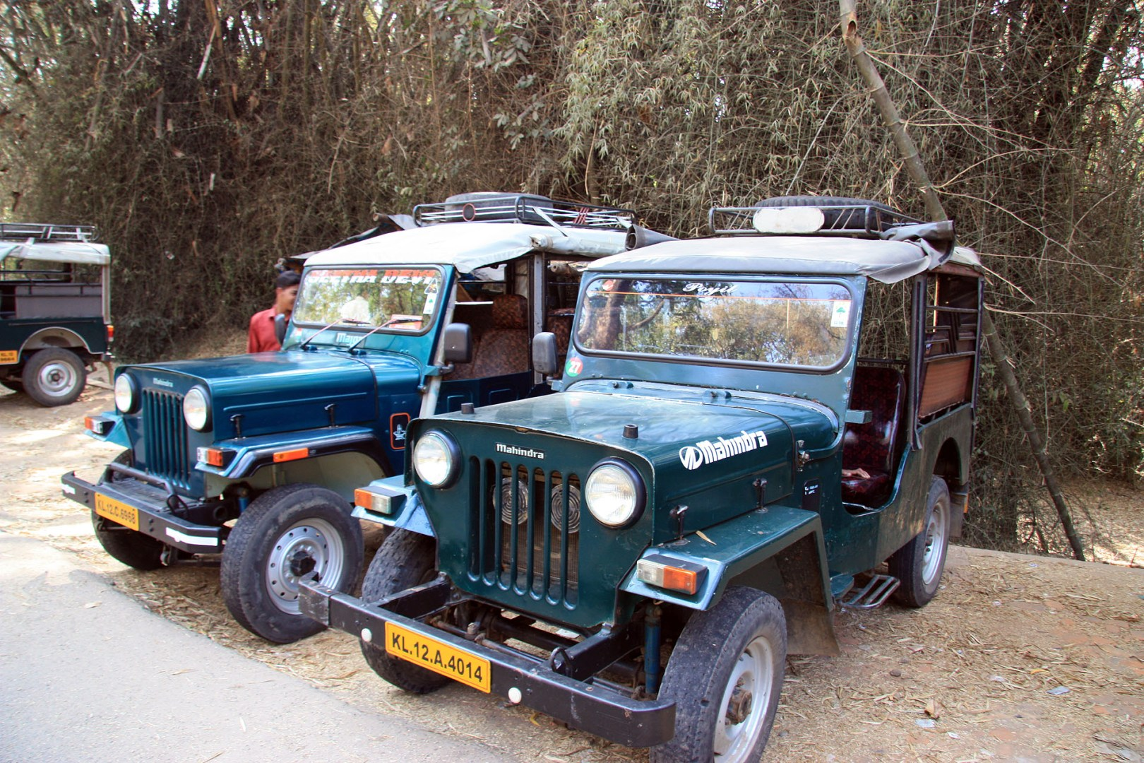 Jeeps-Waynad
