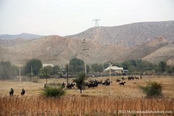 Locals on horses