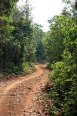 Narrow Track to Tat Katamtok Waterfall