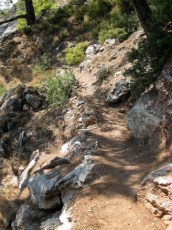 Path down