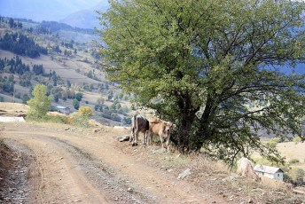 Kackar Mountains