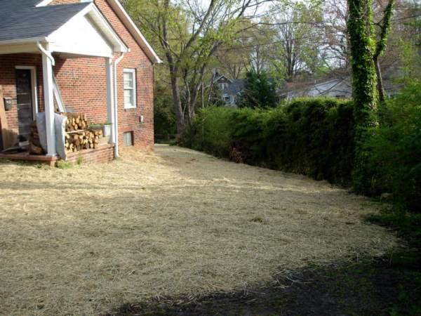 landscape grading myownbackyard