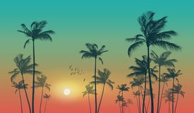 exotic-tropical-palm-trees-sunset-sunrise-highly-detaile-silhouette-tropical-palm-trees-sunset-sunrise-cloudy-102523543