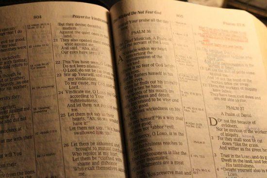 bible-350396_640