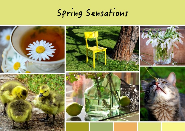 "Mood board – Udendørs: ""Spring Sensations"""