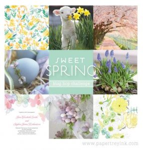 PTI February Blog Hop Challenge