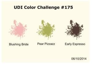 UDI Color Challenge 175