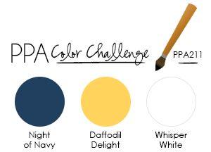 PPA211