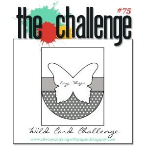 The Challenge 75