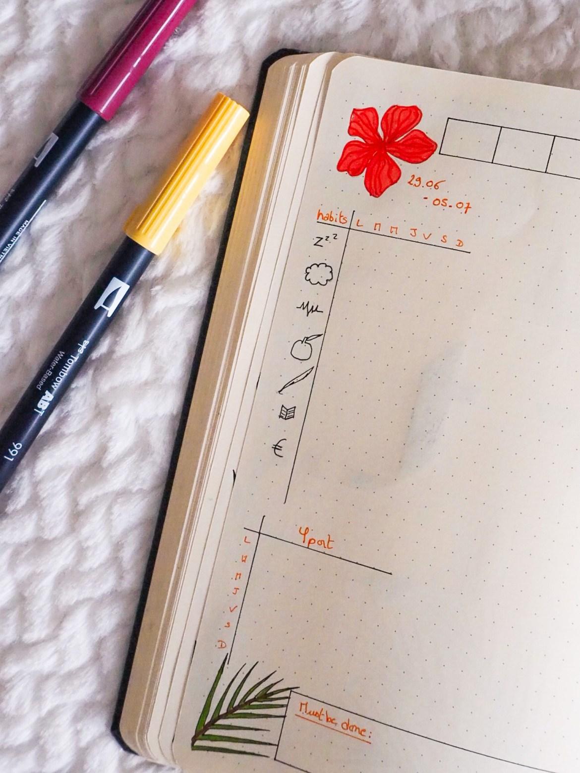 bujo-juillet-dessins-habits-tracker-1