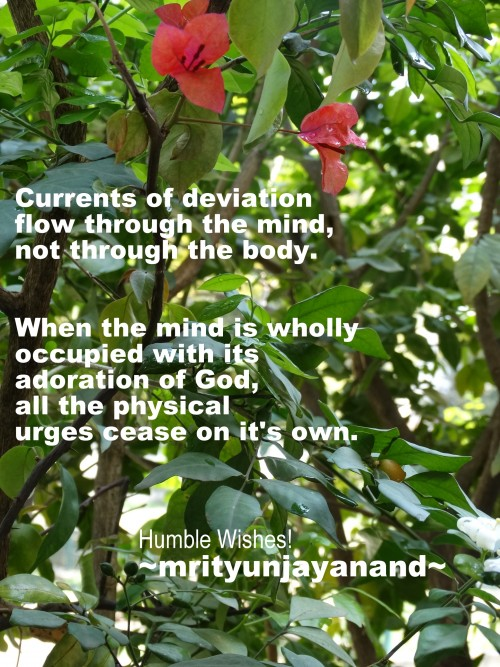 Currents of deviation flow through the mind, not through the body…..!!!