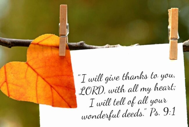 You Have Permission….to be Thankful