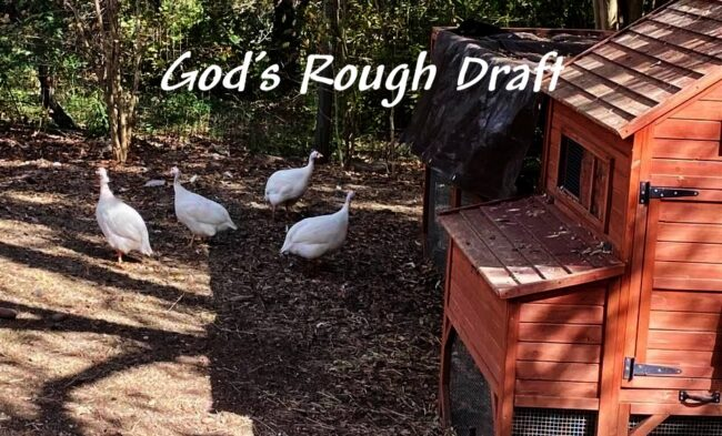 They're God's Rough Draft