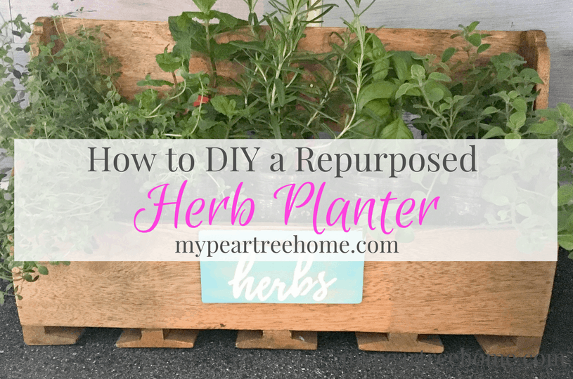 "Re-purpose your own herb planter with this DIY idea. See the post for the printable to make your own ""herb"" sign!"