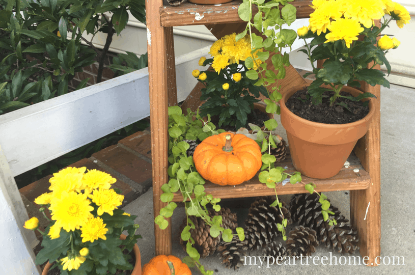 Want an easy solution for decorating your porch for fall? Super cute and low budget! Click to the post for the details and tips!