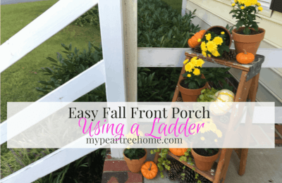 Ladder for Front Porch Decor