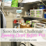 $100 Laundry Closet-Before Pics