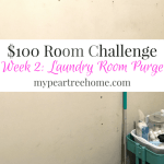 Week 2: $100 Laundry Room Challenge