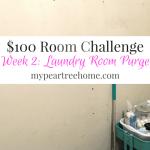 Week 2: $100 Laundry Room Challenge