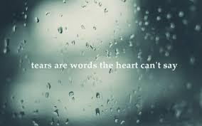 Tears of Joy and Sadness~Marriage