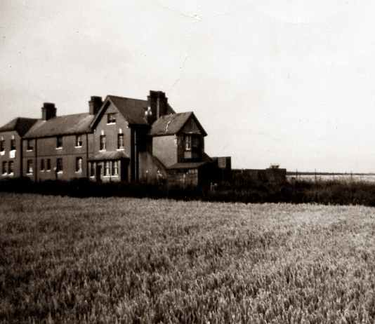 grayscale photo of house on grass field