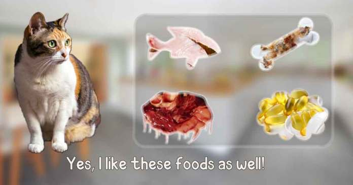 yes, i like these foods as well.