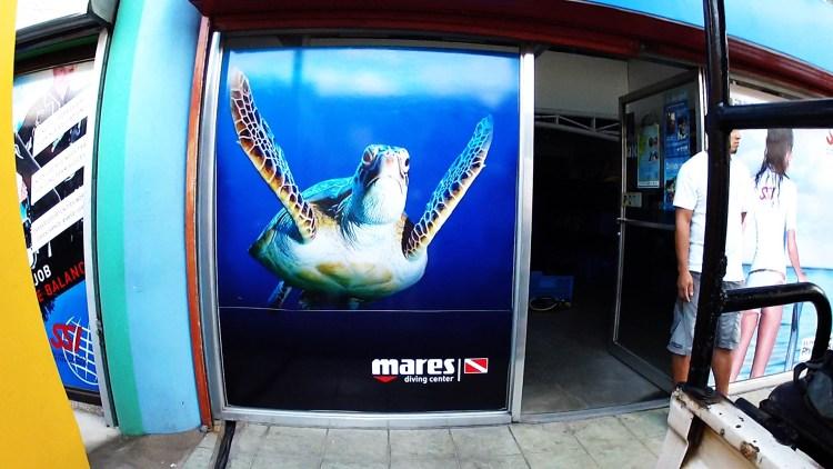 Mares Turtle